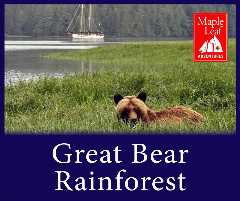 StW Great Bear 2.jpg