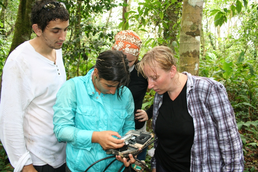 12. Checking camera traps in the field.JPG