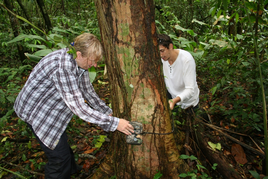 11. Setting up the camera trap site.JPG