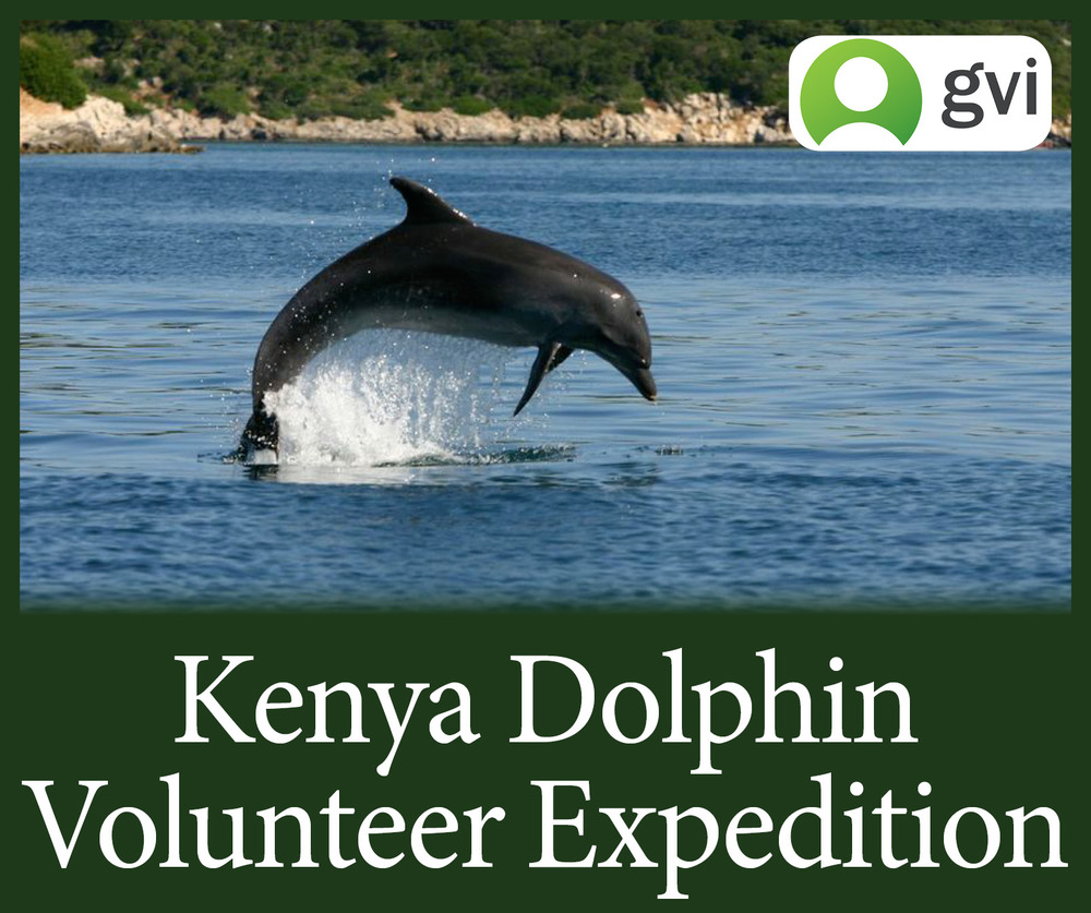 StW Kenya Dolphin Research GVI Edited.jpg