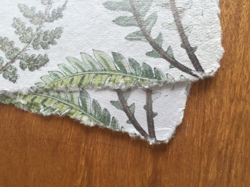 Detail of the fern print and torn edges