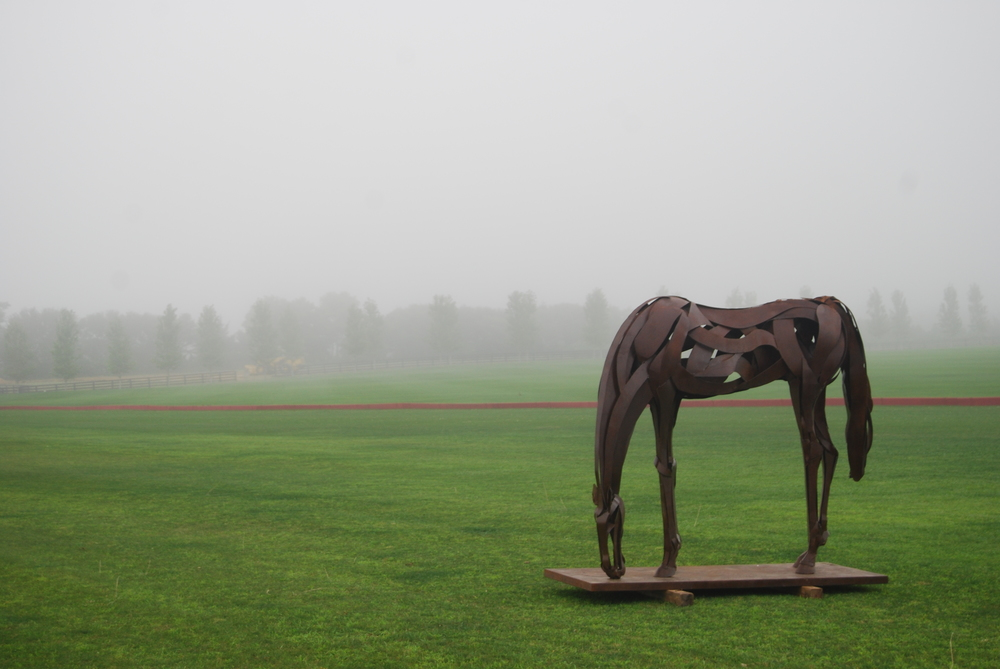 grazing 2014 steel.JPG