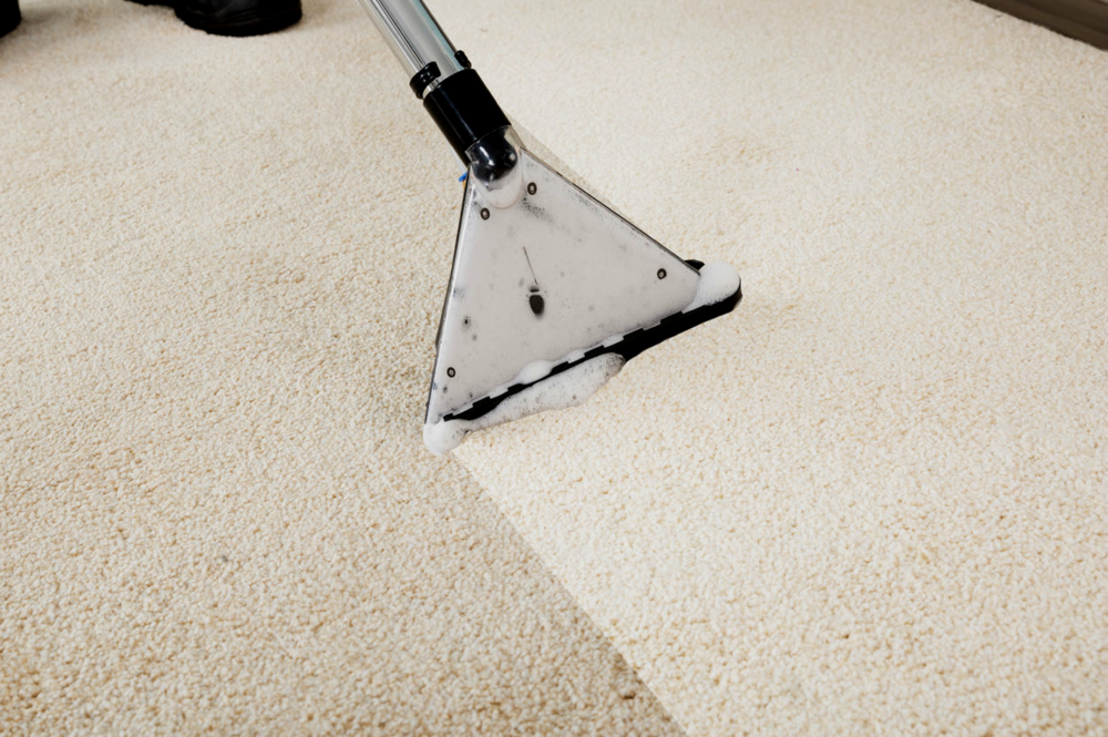 A worker cleaning a carpet with a machine