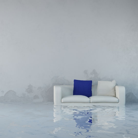 water couch
