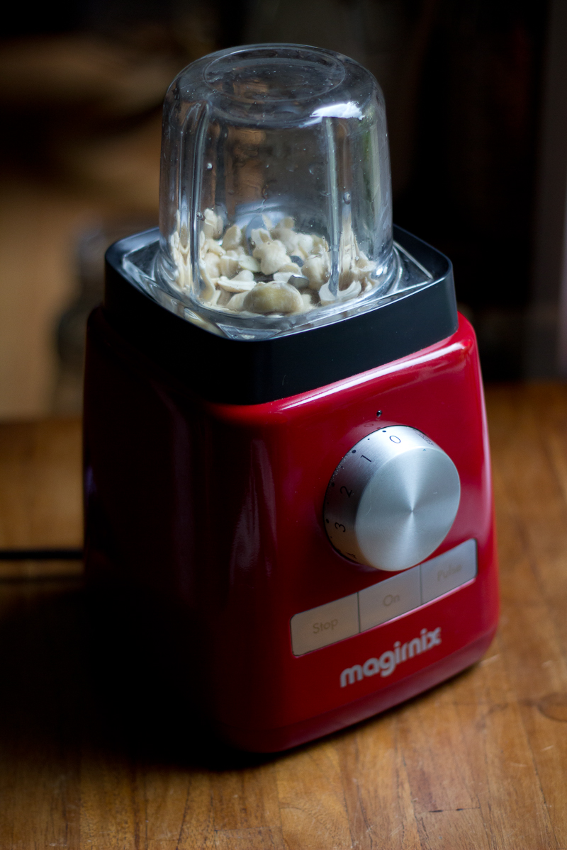 My trusty Magimix LeBlender + spice mill attachment