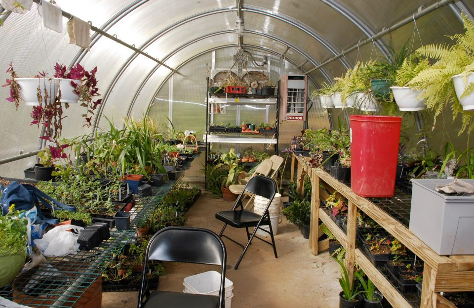 Greenhouse 04.jpg