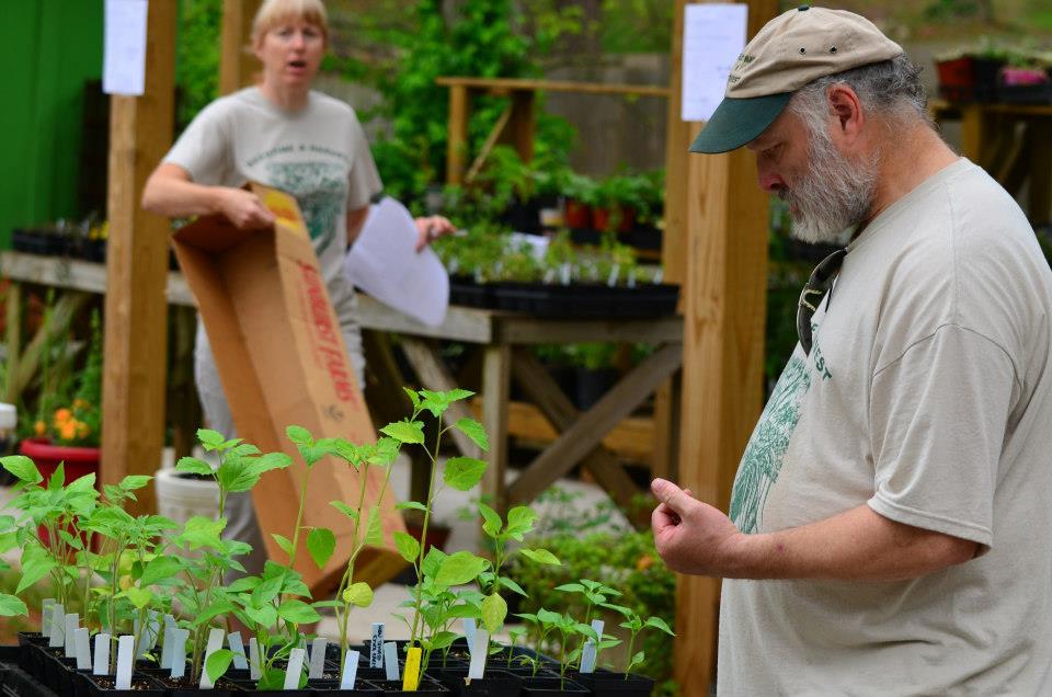 Plant Sale 01.jpg