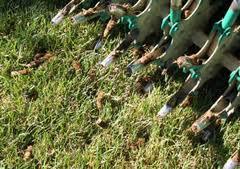 lawn-aeration-carmel.jpg