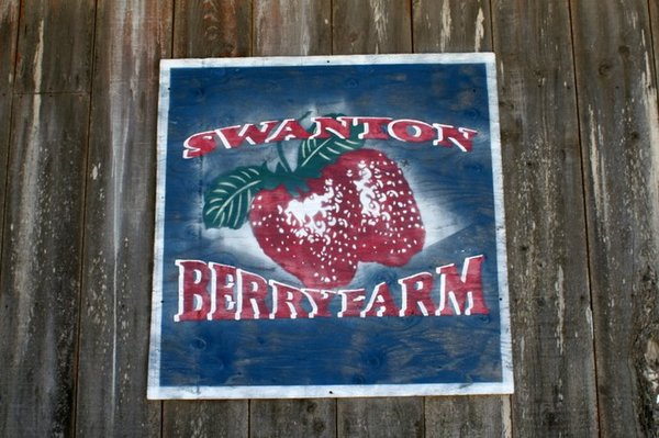 Established California | Adventures | Swanton Berry Farm |