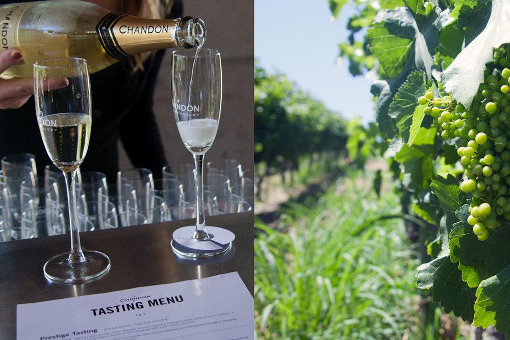 Established California | Adventures| Napa Valley Wine Tasting