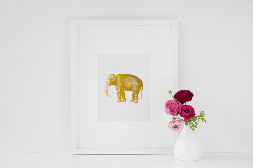 Established California | Habitat | Scarlet & Gold | Golden Elephant