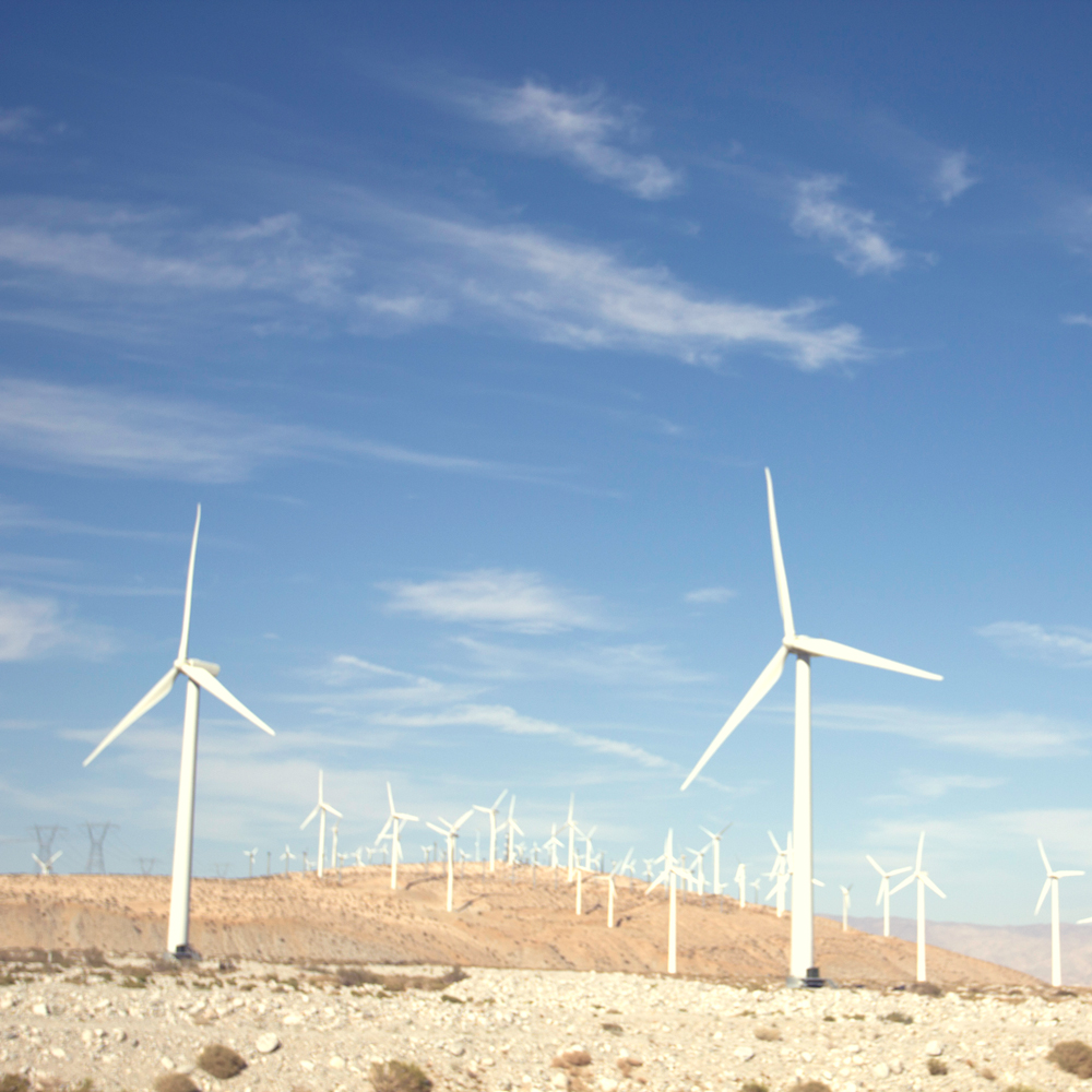 Established California | Adventure | Palm Springs | Windmills