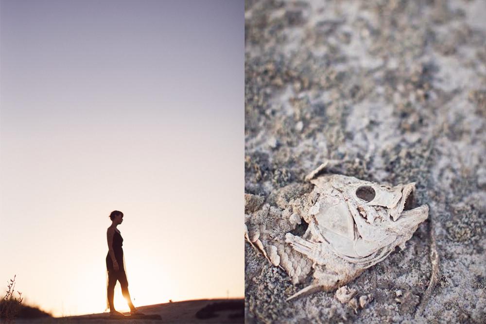 Established California | Adventures | Salton Sea | Stroll