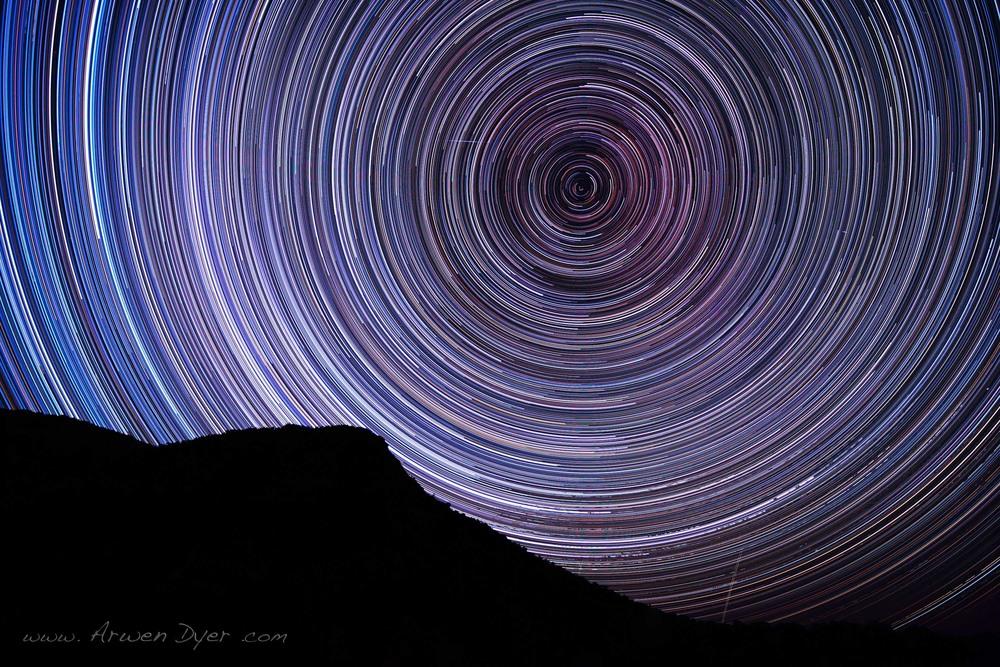 circles: Arwen Dyer