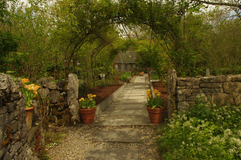The garden at the Perfumery, Burren uplands
