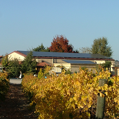 Castoro Cellars Templeton | CALIFORNIA 80 kW