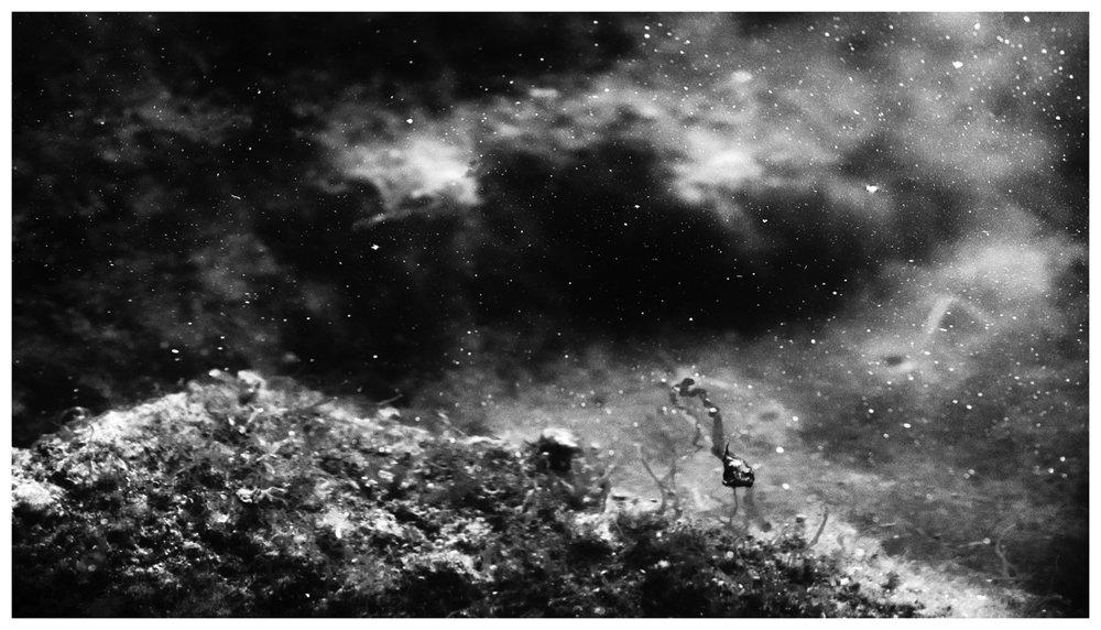pond nebulae aneelinesorensen--4.jpg