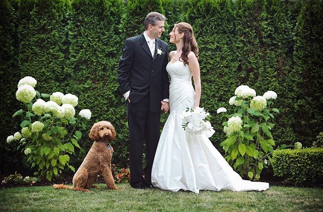 "Shauna and Thomas and their sweet dog Sasha! When a bride send you a testimonial this beautiful, you have to share it, right? Here goes... ""There is a lot of 'good' when it to comes to wedding photographers. But what makes Lori great is not only how quickly she framed and captured so many priceless faces, expressions, moments and details from our wedding day, but how above average those photos are. I put so much effort into planning the wedding but I can't describe how quickly time flies. Our photos were, without doubt, our best investment. Lori captured so many details, expressions and emotions - and so beautifully. She is talented and fast - she frames, focuses and snaps photos so skillfully. Plus she is experienced, so she knows what to look for and when. She submitted some of our photos to WedLuxe and were one of their featured weddings! But what amazed me was the magic of our wedding photos - I have spent hours looking at details I had missed because the day went by so fast. It wasn't until we asked Lori to come back and do a photoshoot for us years after our wedding that I was able to be more observant of her. She is very talented, but I think part of what makes her photos so special comes from the magic she creates through her enthusiasm and genuine excitement. She has a loving and supportive, selfless, mother/sisterly energy - it's as though you have one of your biggest fans along with you - taking photos - for your special day. "" Thank you SO MUCH, Shauna! 🙏🏻❤️"