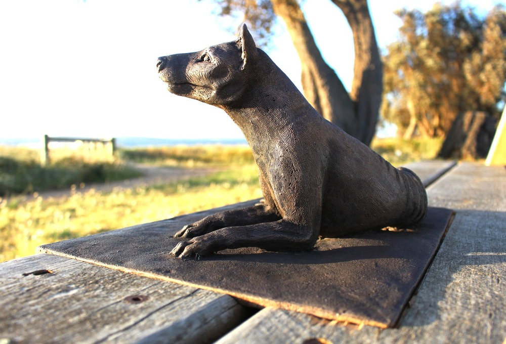 Thylacinelooking.jpg