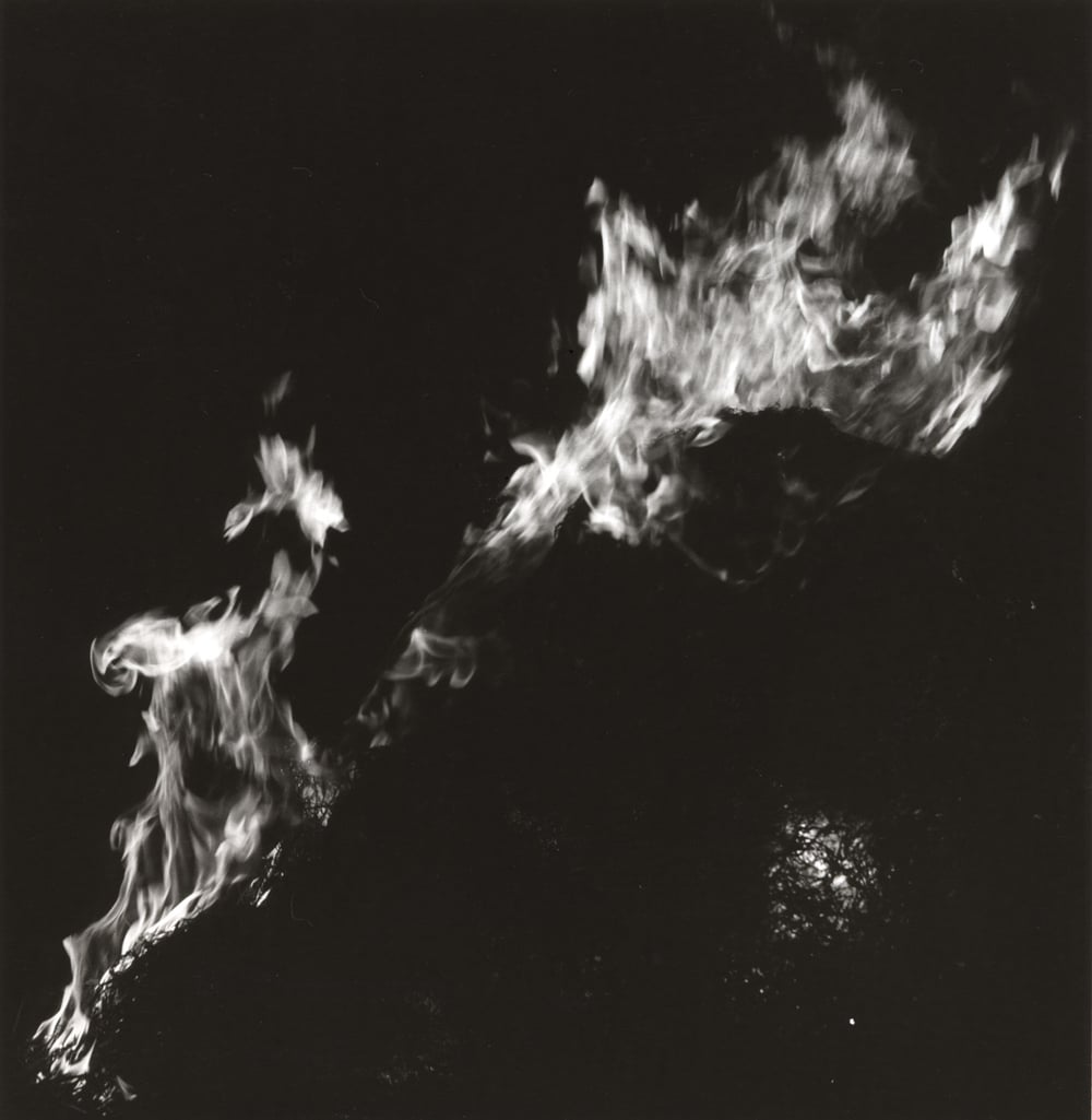 feu-2.jpg