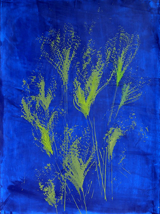 GRASSES ON COBALT BLUE