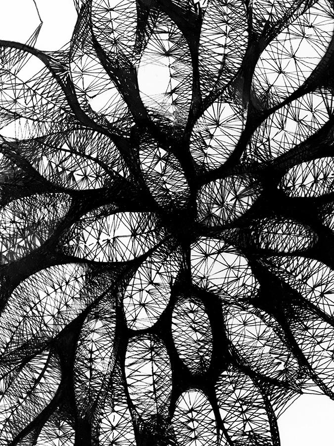 Morphogenesis15-Detail.jpg