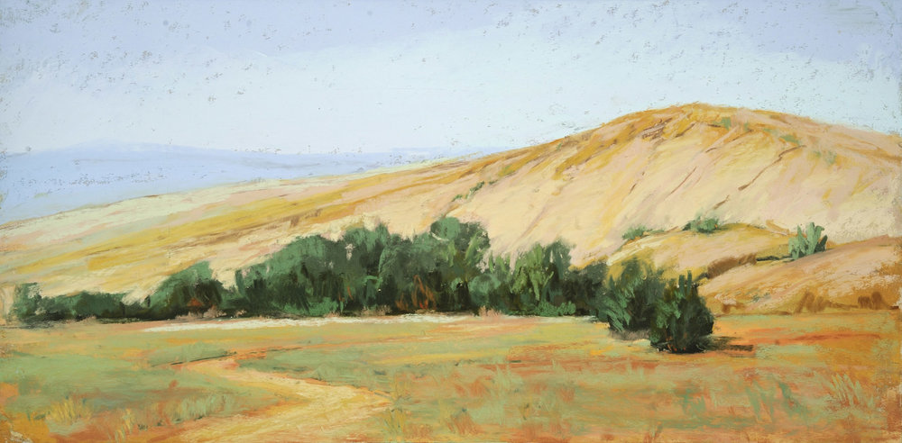 Sandy_Hill_Pastel_8x16_by_Betsy_Forster