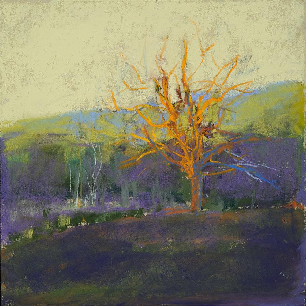 Winter_Tree_II_Pastel_10x10