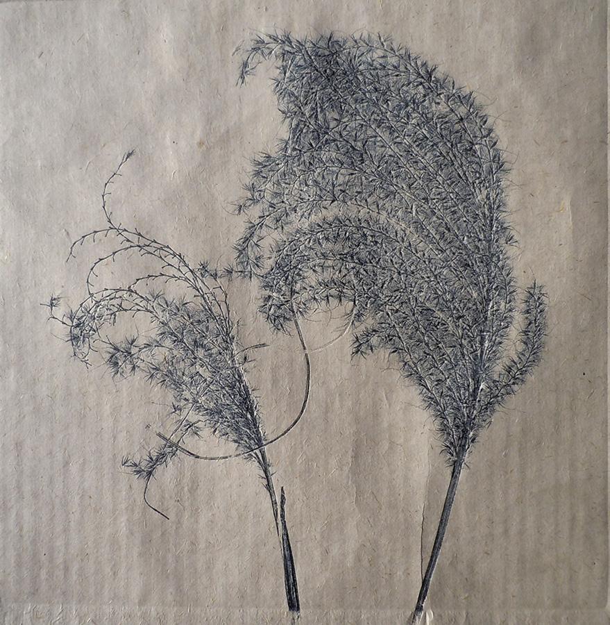 """Grasses on Bhutan Paper II"" by Mary D. Ott"