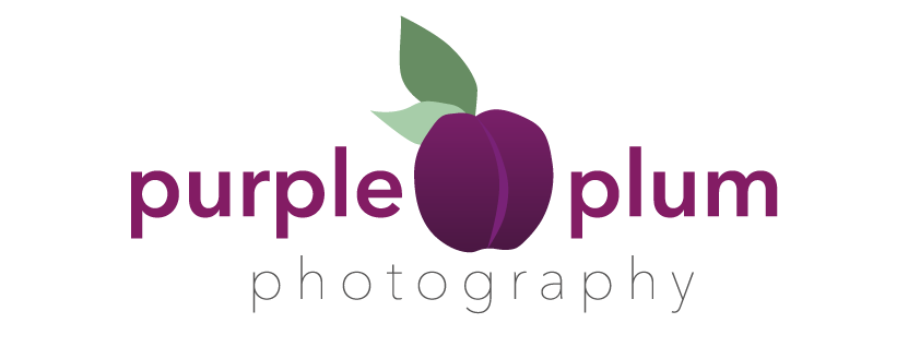 Purple Plum Photography