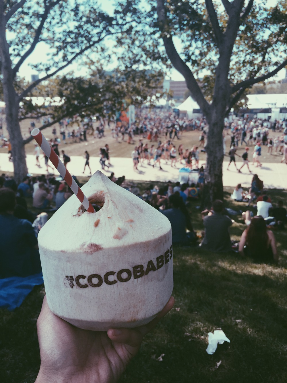 The best refreshing drink from Gov Ball.