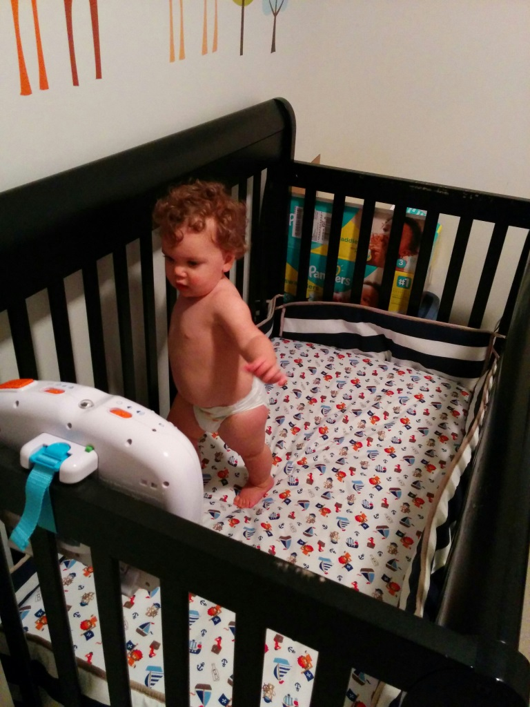 Crib walking.jpg