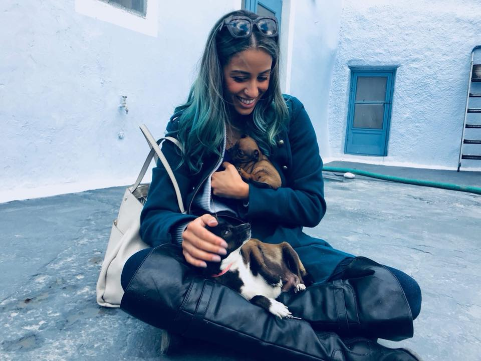 Me, living my actual dreams cuddling a bunch of puppies in Santorini.