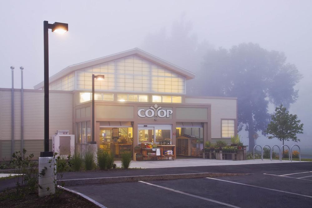 Foggy COOP.jpg