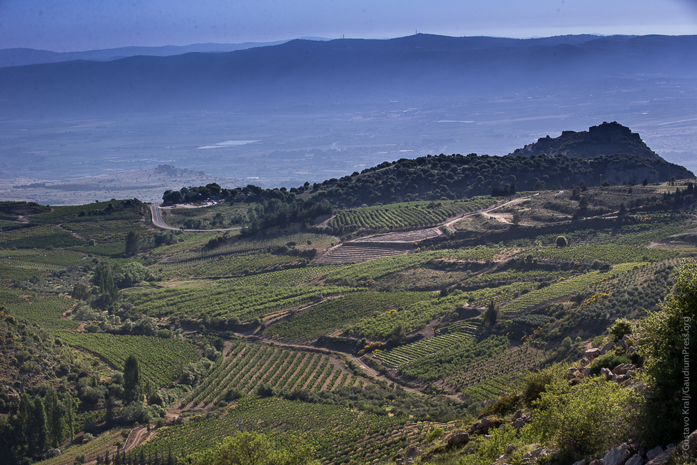 Tierra Santa: alrededores del Castillo de Nimrod, de camino a la antigua Tiro y Sidon. Foto: Gustavo Kralj/Gaudiumpress