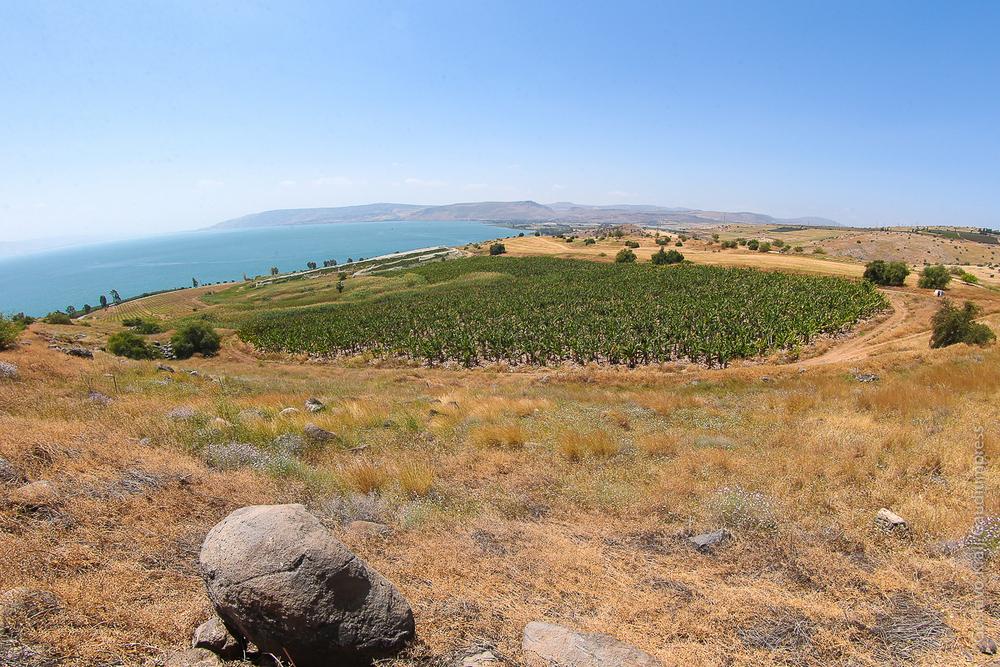 Tierra Santa: Mar de Galilea cerca de la planicie de la multiplicación de los Panes. Foto: Gustavo Kralj/GaudiumpressImages.com