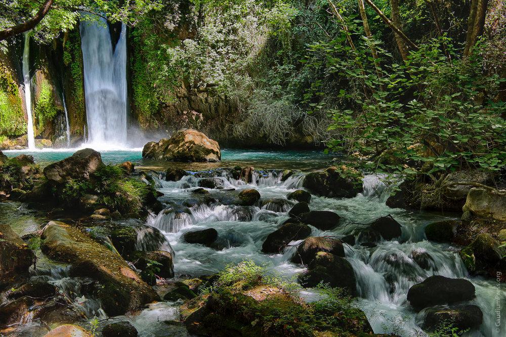 Tierra Santa: Nacientes del Jordán. Foto: Gustavo Kralj/GaudiumpressImages.com