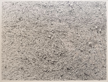 "vija celmins ""untitled desert"""