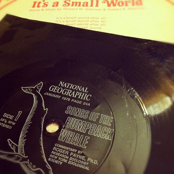 Hey who wants to listen to some records with me? (Taken with  instagram )