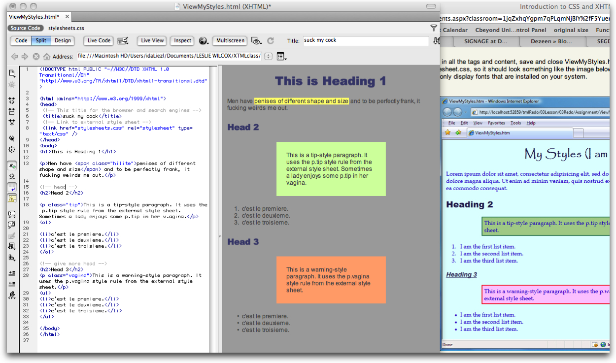 I'm taking an Intro to CSS for work. Today's assignment is to manipulate the stylesheets.