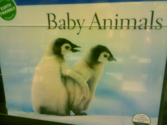 Well, I do need a new Baby Animals Banging calendar…