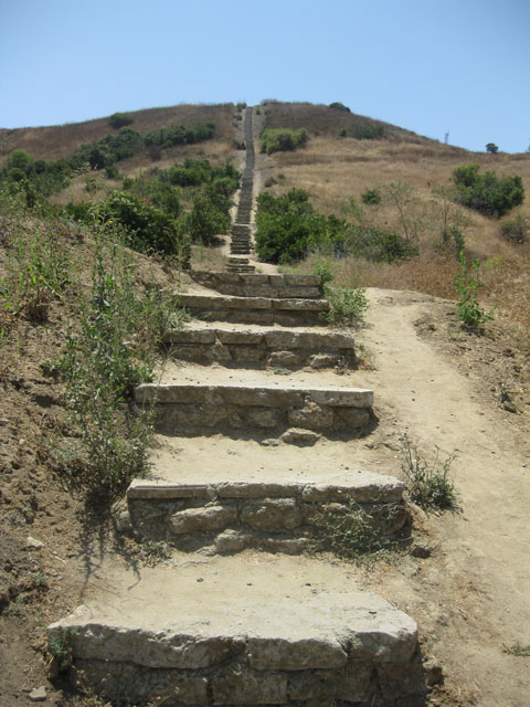 "A couple of us from the office are going to embark up these stairs for a little healthy weekly workout. Apparently the steps vary in height, some of which are about 18"" high.    At the top of this 500 foot climb awaits the  Baldwin Hills Overlook .    I cannot wait…     (photo via  laexplored.wordpress )"