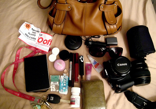 What's in my bag | 11.23.08    (click on the photo for notes)
