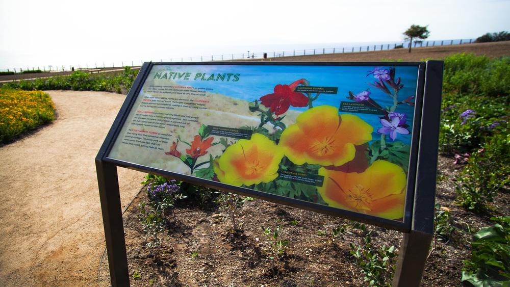 Abalone Cove Interpretive Signage