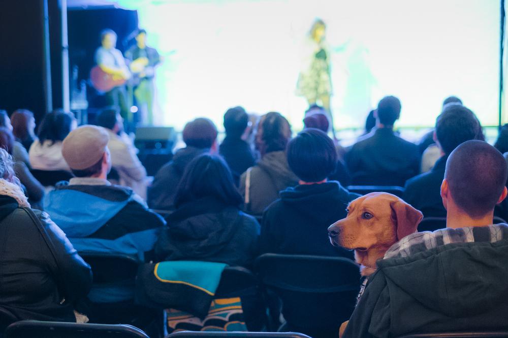2 Girls 1 Pup at Riot LA Comedy Festival
