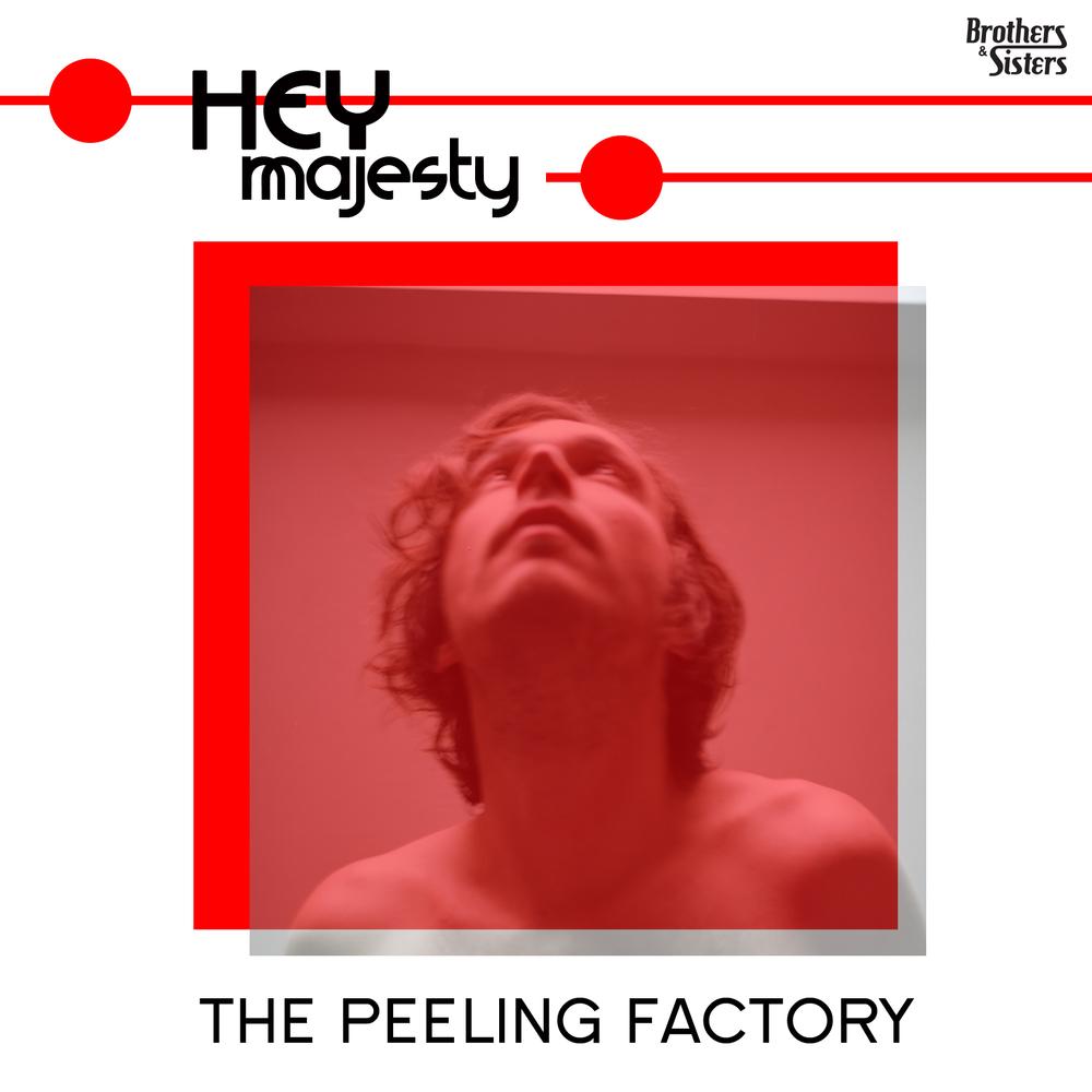 L'album Peeling Factory de Hey Majesty que j'ai eu la chance de masteriser a été enregistré et mixé à l'aide d'un multi-piste Korg et d'une sélection réduite de microphones. C'estun des plus beauxalbums sur lequel j'ai travaillé en 2014.