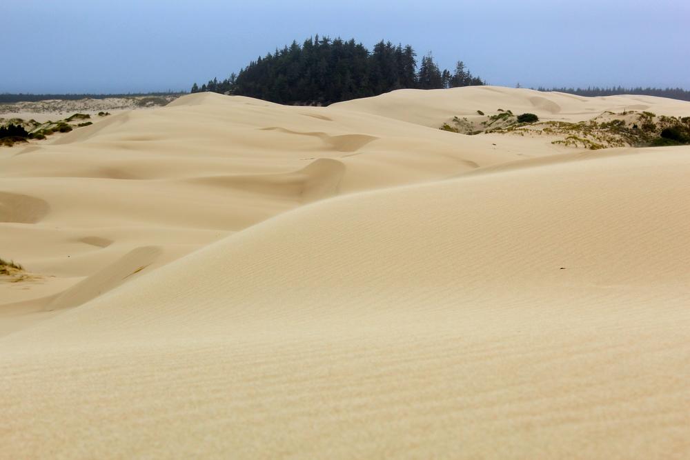 oregon-dunes