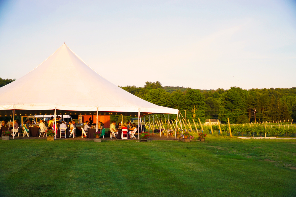 Max Chef to Farm at Rosedale Farm | Photo by Alycia Chrosniak