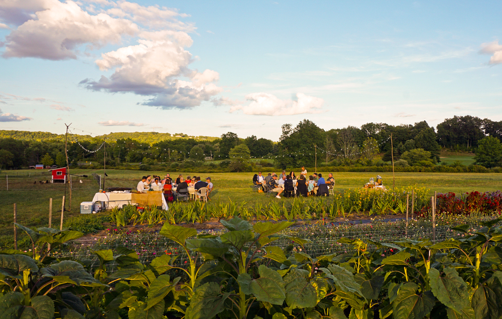 Eddy Farm Dinner Series | Photo by Alycia Chrosniak