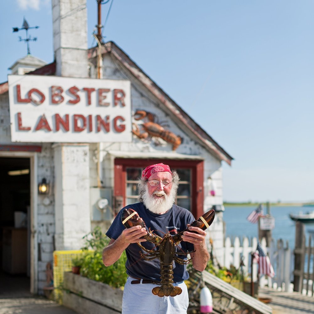 Enea Bacci of Lobster Landing